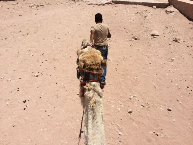 140622 Petra - From-Camels-back