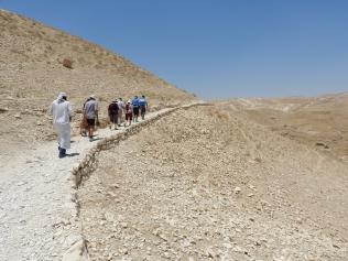 Pathway at Wadi Qilt